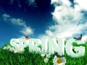 Happy-Spring-Day-Wallpaper-1