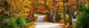 Fall on Cape Cod